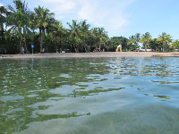 The lagoon and playground.