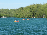 View of kayakers from the pier.