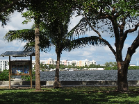 Looking across the water from Bicentennial Park.