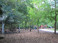 Large shaded picnic area surrounded by pretty trees, near the playground.