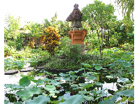 Meditative spot in the Southeast Asian garden.