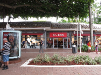 Guess store, under the banyan tree.