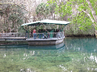 The underwater observatory where you can see manatees and fish.