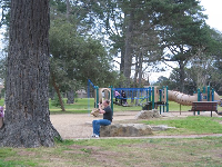 The toddler playground, tall trees, and some rocks to climb and jump off!