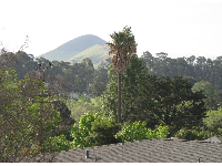 Views of hills, from Bishop St.