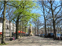 Winter trees and spring trees, on Lange Voorhout.