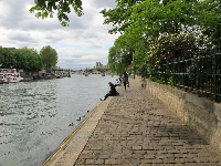 Golden cobblestones and Pont des Arts in the distance.