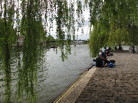 Sitting below the willow trees beside the Seine. Nothing is better on earth than this!
