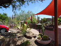 Cactus garden and red shade canopy catching the light.