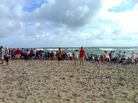 Observers gather to see a turtle release.