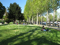 Laying in the grass among the daisies, in the Jardin du Trocadero.