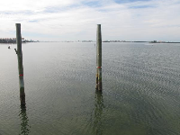 View across the water from the pier.