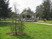 The gazebo and lawn.