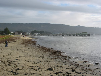 The walk along Pillar Point Harbor to the beach where the surfers surf Mavericks!