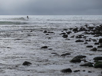 Rocky shore and surfer.