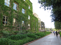 Ivy-covered building.