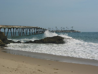 The beach at Mussel Shoals.