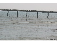 Pier swells at Mussel Shoals, as seen from Shoals Restaurant.