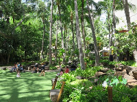 Kids like to play on the shady lawn inside Royal Hawaiian Center.