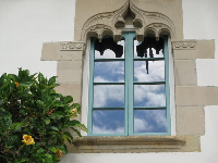 An ornate window and tropical flowers.