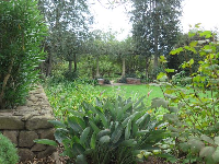 The rectangular side garden.