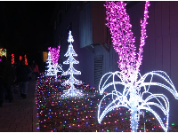 White and pink flower-like lights.