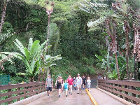 People walking in Waimea Valley.