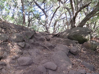 Looking up at boulders and trees.