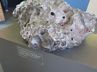 A fragment of the meteor that created Meteor Crater.