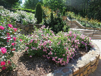 The stairs and stone walls at the rose garden.