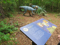 Plaques tell you about each dinosaur type.