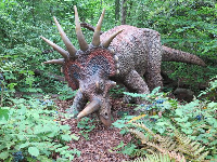 Styracosaurus had impressive horns and frills.