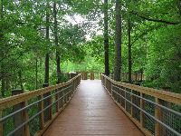 Long boardwalk- great for a stroll.