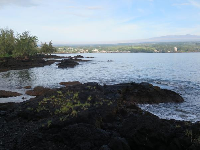Rocks and bay, across from Lilioukalani Gardens, on Lihiwai Street.