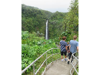 Taking steps down to the viewing area for Akaka Falls.