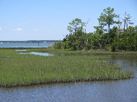 Bogue Sound and its grass islands.