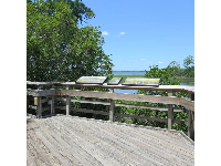 Sunny boardwalk with plaques informing about nature.