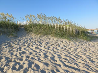 Dunes and sea oats.