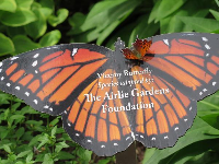 Butterfly sitting on a butterfly sign!