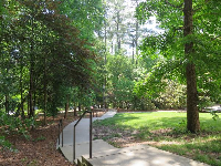 Forested area that leads to the parking.