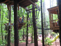 Climbing between the tree houses.