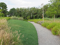 Landscaped grounds with wispy grasses and little hills to run on.
