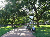 People on benches in Lafayette Square.