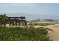 Engineering students cross Lagoon Rd and sit here, taking in views of Goleta Beach.