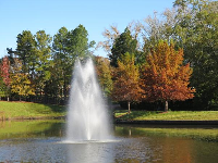 Fountain and fall trees.