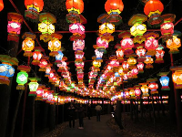 Lanterns that go on for a long time! At the Chinese Lantern Festival in November!