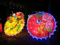 Beautiful umbrellas, at the Chinese Lantern Festival.
