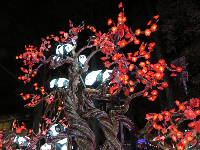 Pandas in a tree, at the Chinese Lantern Festival.