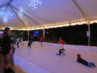Fake ice skating at the Santa Train.