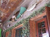 Canoe and fish above the entry door.